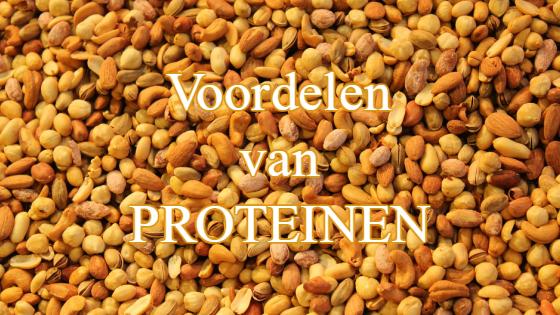 voordelen proteine
