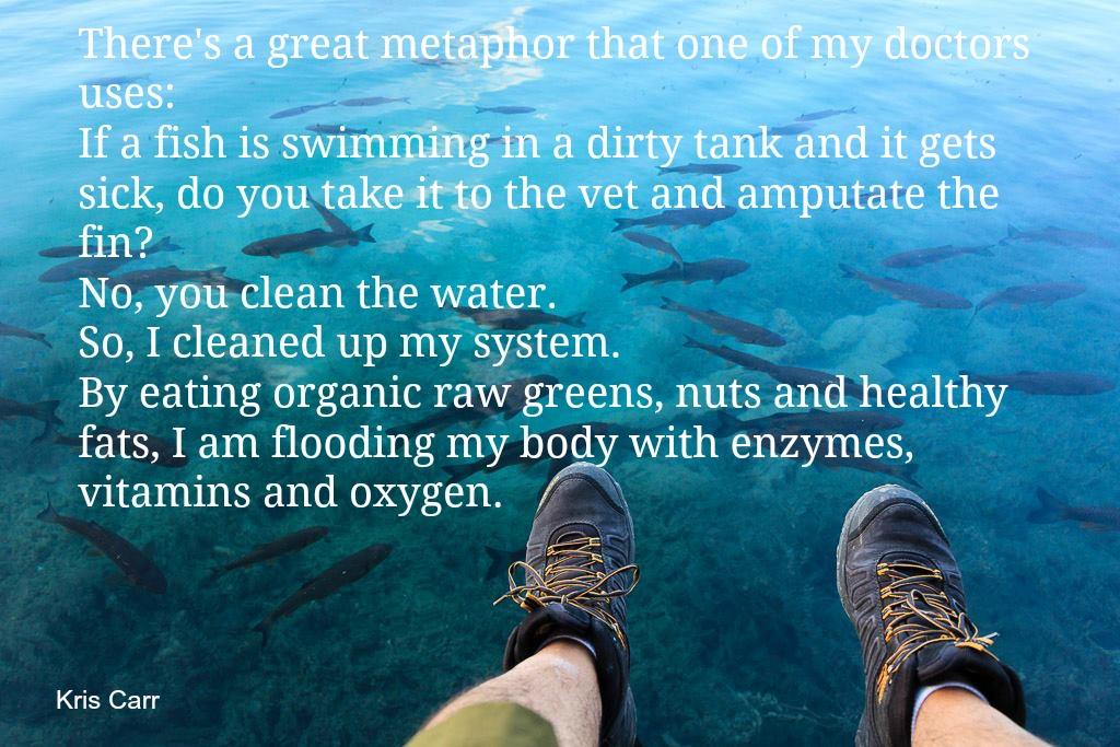 reinig je lichaam